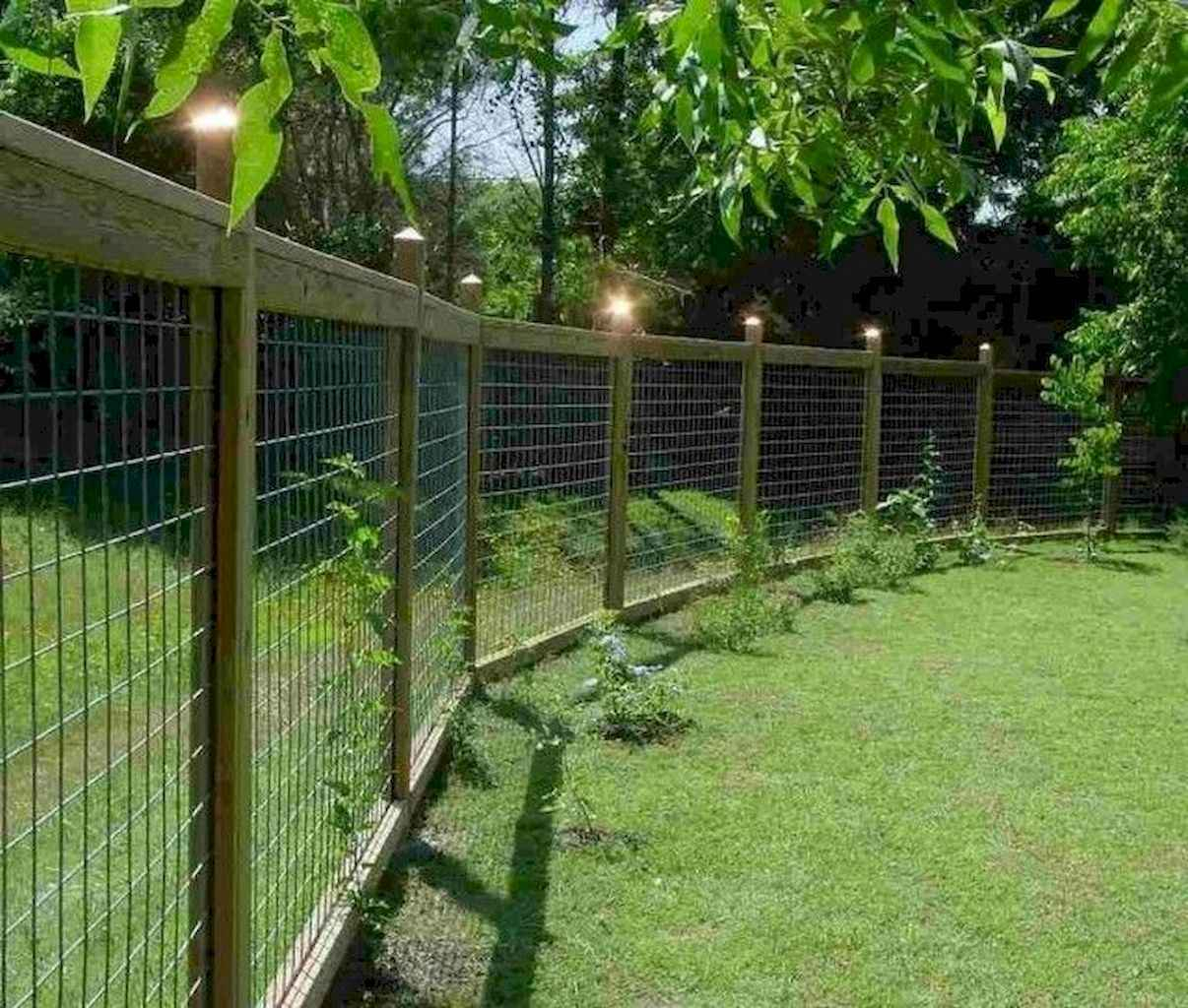65 Diy Backyard Privacy Fence Design Ideas On A Budget with 14 Awesome Initiatives of How to Craft Privacy Backyard Ideas