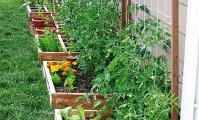 Affordable Backyard Vegetable Garden Designs Ideas 35 pertaining to 10 Some of the Coolest Initiatives of How to Craft Backyard Vegetable Garden Ideas