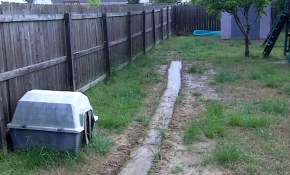 Backyard Drainage Problem throughout 15 Clever Ways How to Make Drainage Ideas For Backyard