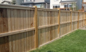 Backyard Fencing Ideas Homesfeed Back Yard Fence Northeast intended for Backyard Fence Ideas Pictures