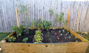 Backyard Vegetable Gardens Snaz Today intended for 14 Some of the Coolest Concepts of How to Makeover Small Backyard Vegetable Garden Ideas
