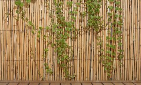 Backyard X Scapes 6 Ft H X 16 Ft L Natural Jumbo Reed Bamboo Fencing within Backyard Fence Prices