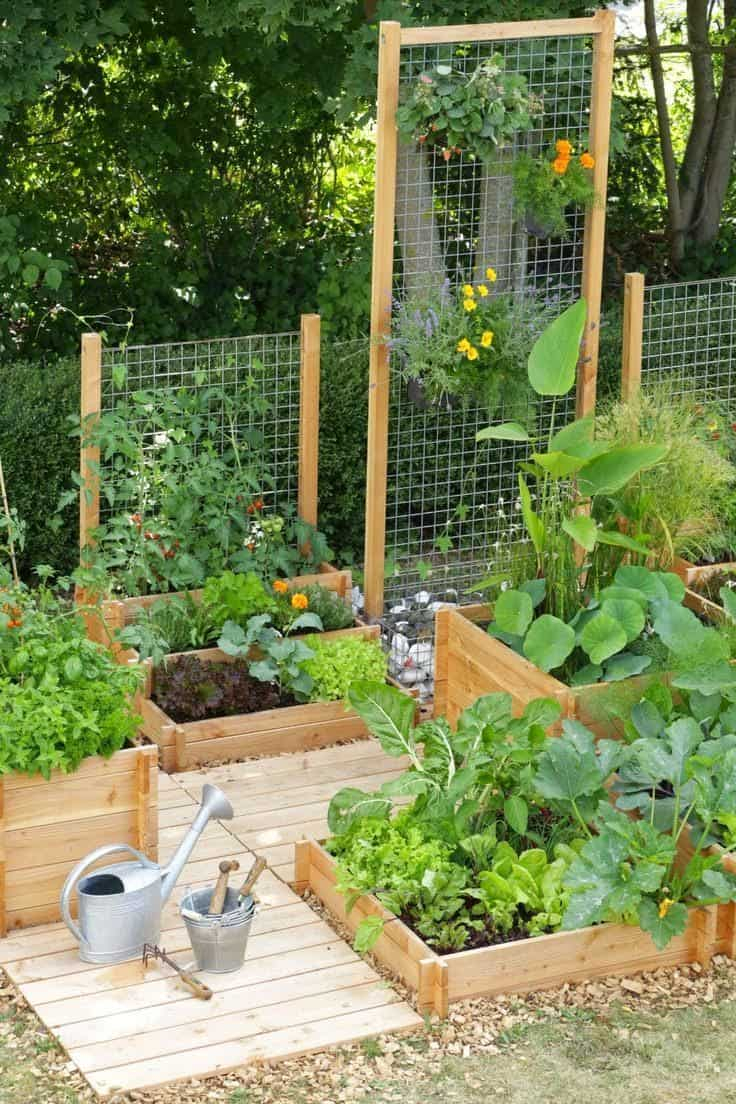 Best 20 Vegetable Garden Design Ideas For Green Living in Vegetable Garden Design Ideas Backyard