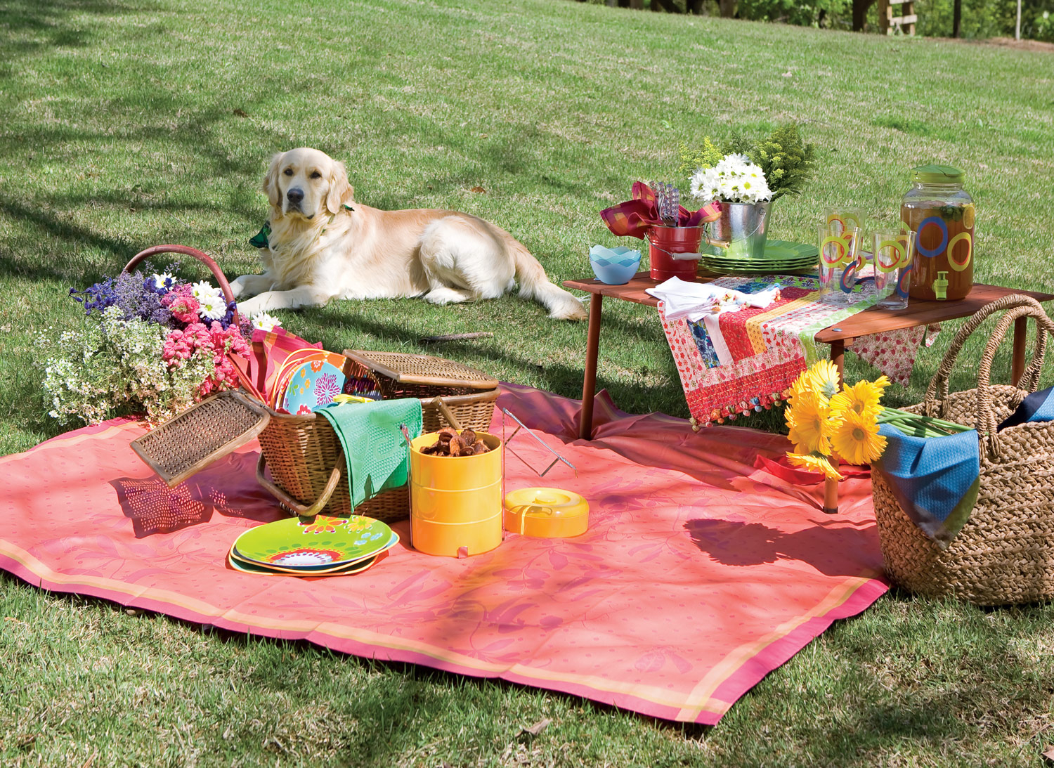 Creative Ideas For Packing The Perfect Picnic with regard to 11 Smart Ideas How to Build Backyard Ideas For Summer