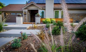Drought Tolerant Landscaping Ideas From San Diego inside Backyard Landscaping Ideas San Diego