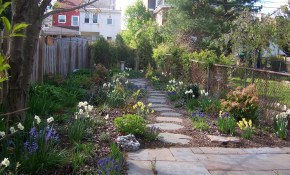 Easy Backyard Landscaping Ideas No Grass Small Easy throughout Backyard Ideas Without Grass