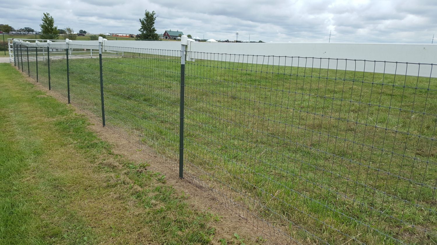 High Tensile Electric Fence Backyard Chickens within Backyard Electric Fence