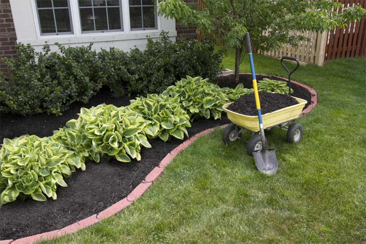 Impressive Affordable Landscaping Ideas Backyard Beautiful with regard to 13 Clever Initiatives of How to Make Affordable Landscaping Ideas Backyard