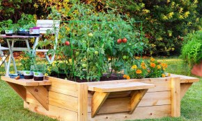These Simple Planter Boxes Are Easy To Build The Family Handyman throughout Backyard Planter Box Ideas