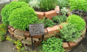 This Herb Garden Design Brings Creativity And Usefulness To in 12 Awesome Concepts of How to Make Backyard Herb Garden Ideas