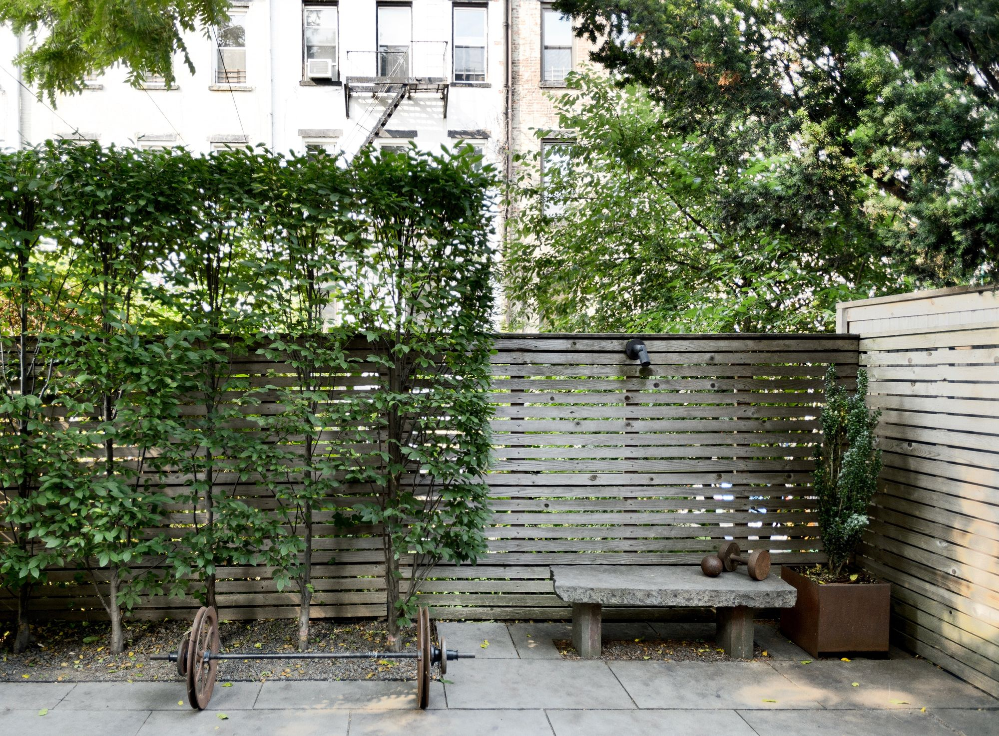 Garden Hacks 10 Ideas For Privacy Screens Gardenista for Privacy Screen Ideas For Backyard