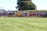Runners bolt from the starting line during the 8th annual Milk Run at the Schwartzentruber farm on Tuesday, September 20, 2016.