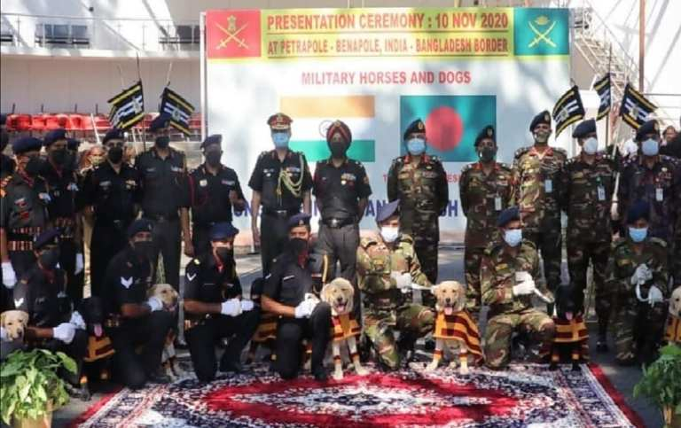 India gifts 20 horses, 10 mine detection dogs toBangladesh Army