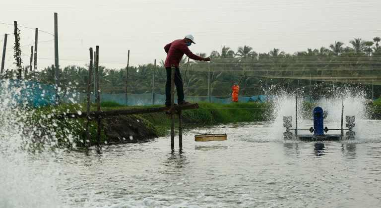 E-SANTA, an electronic marketplace for aqua farmers inaugurated by Commerce Minister