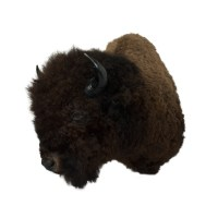Bison - Giant Bison - Taxidermy Mounts for Sale and ...