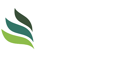 Tax Accountant Mississauga | Taxvisors.ca
