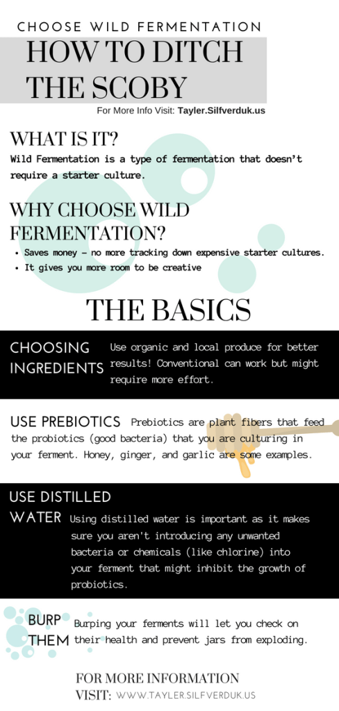 Choose Wild Fermentation - How to Ditch the SCOBY - Tayler Silfverduk - Want to ferment but feel lost when it comes to making live foods? Want to know the difference between culturing and wild fermenting? Want to get your hands dirty and start wild fermenting! This post breaks it all down for you so you can ferment the perfect wild ferment!