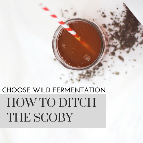Choose Wild Fermentation – How to Ditch the Scoby