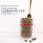 Easy Gluten-Free Chocolate Mug Cake - Tayler Silfverduk DTR - #chocolatecake #glutenfreechocolatecake #chocolatedessert #easychocolatedessert #microwavecake #microwavedessert #vegandessert #vegancake #veganchocolatedessert #5minutedessert #easyglutenfreedessert #celiacfriendlydessert #cakeinajar #mugcake #glutenfreemugcake #glutenfreecakeinajar #veganmugcake #vegancakeinajar #chocolate #chocolatedessertrecipe #glutenfreerecipe #celiacdietitian #celiac #rd2be #dietetics