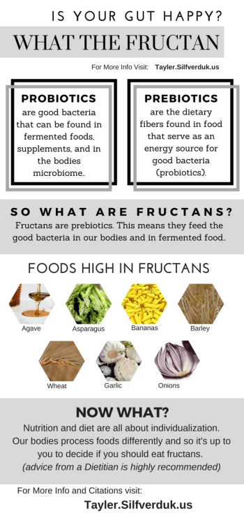 What the Fructan? - Are you Keeping your Gut Happy and Healthy? - Tayler Silfverduk - #fructans #resistantstarch #fodmaps #highfructanfood #probiotics #prebiotics #guthealth #nutritionfacts #dtr #dietetics #rd2be #nutritioninfo #nutritioninfographic
