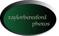 taylorberesford photos