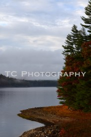 Reservoir Foliage | Taylor Cannon Photography
