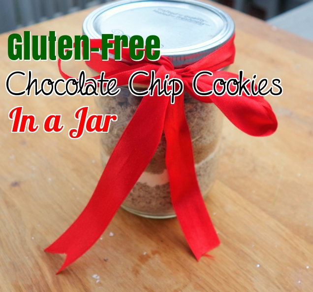 One Bowl, Gluten-Free Chocolate Chip Cookies in a Jar