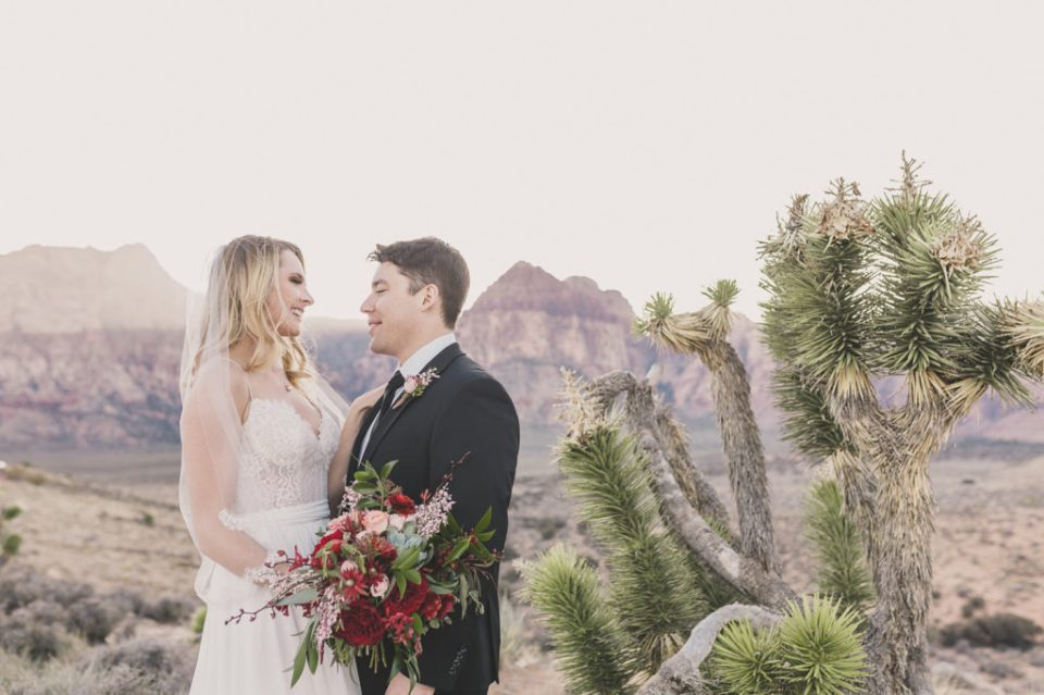 Red Rock Canyon wedding portraits by Taylor Made Photography