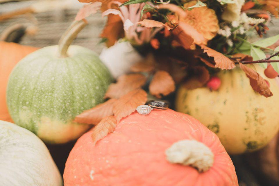 wedding rings rest on pumpkin before Freestone Lodge wedding