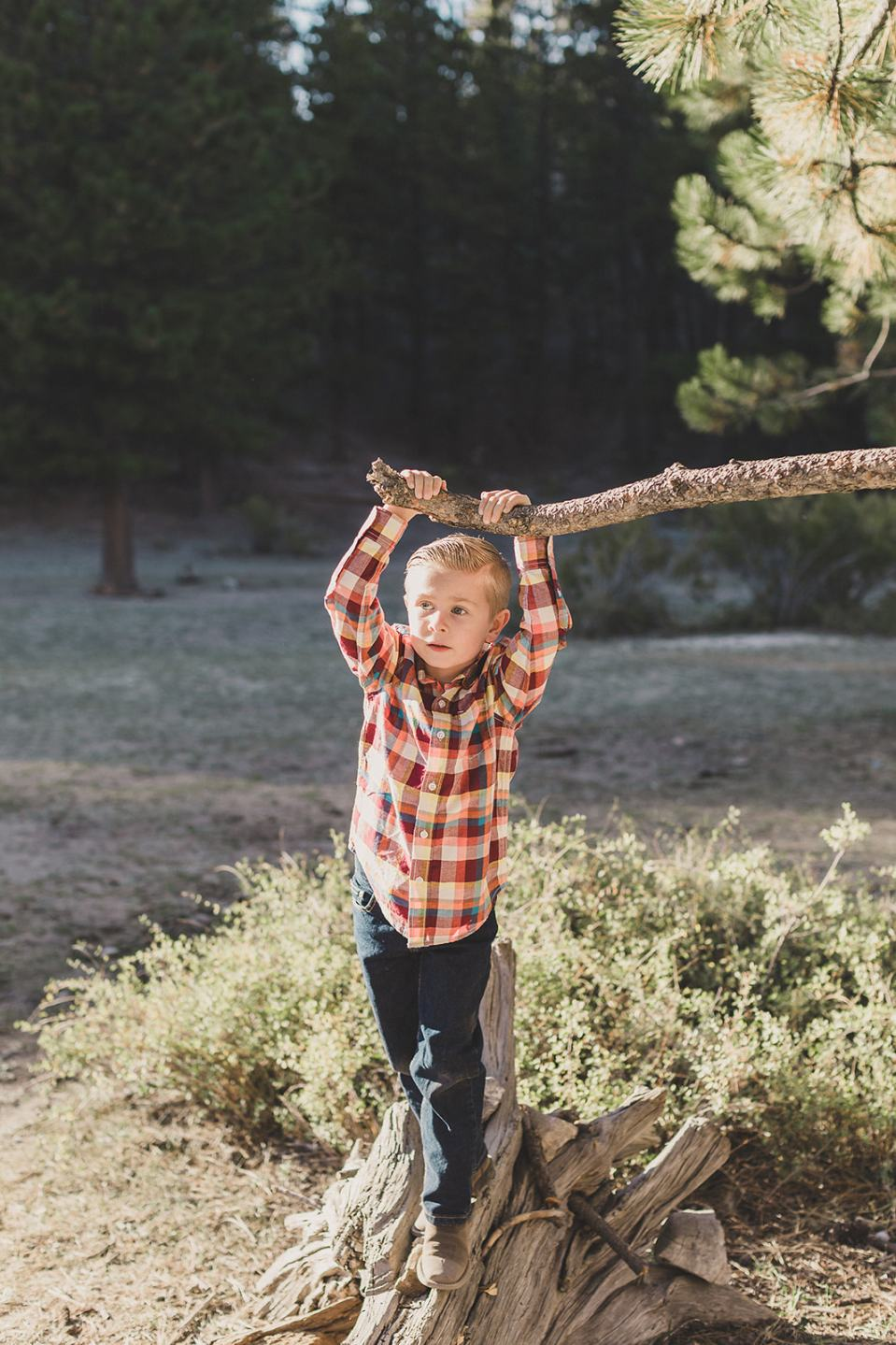 kid plays with tree branch during family photos