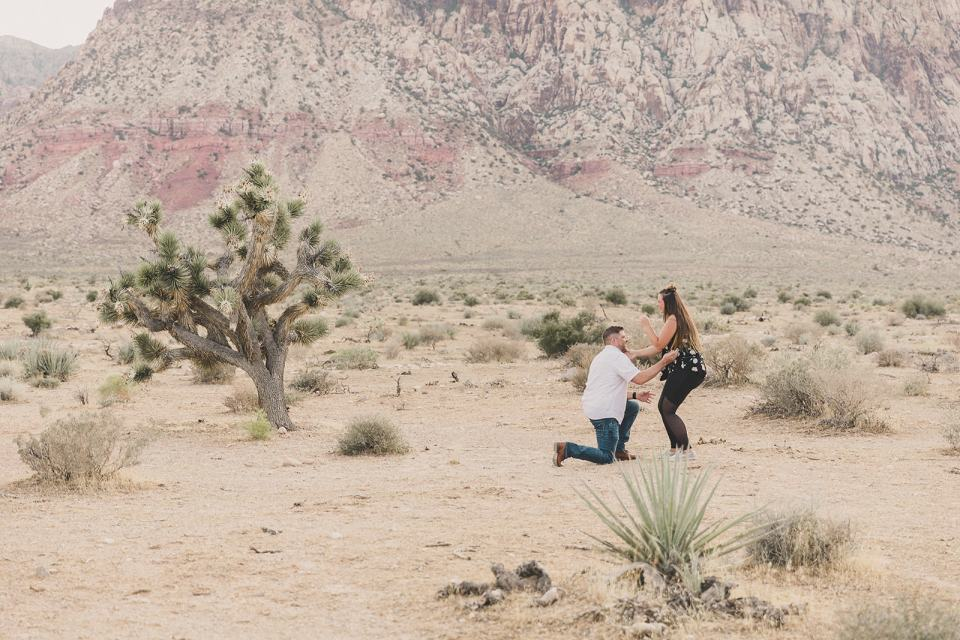 groom kneels during First Creek Canyon Proposal  photographed by Las Vegas wedding photographer Taylor Made Photography