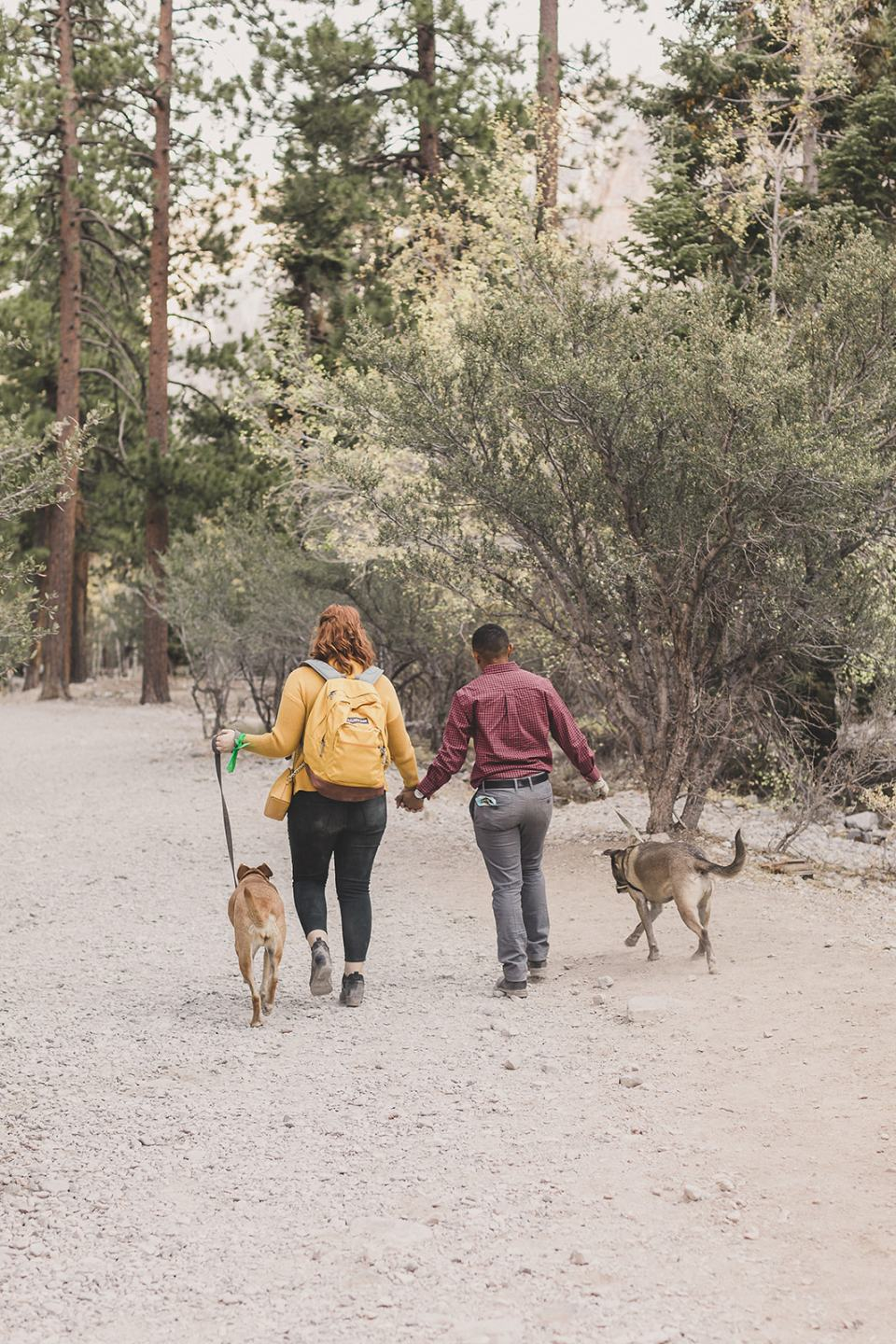 couple walks with dogs along Mary Jane Falls trail