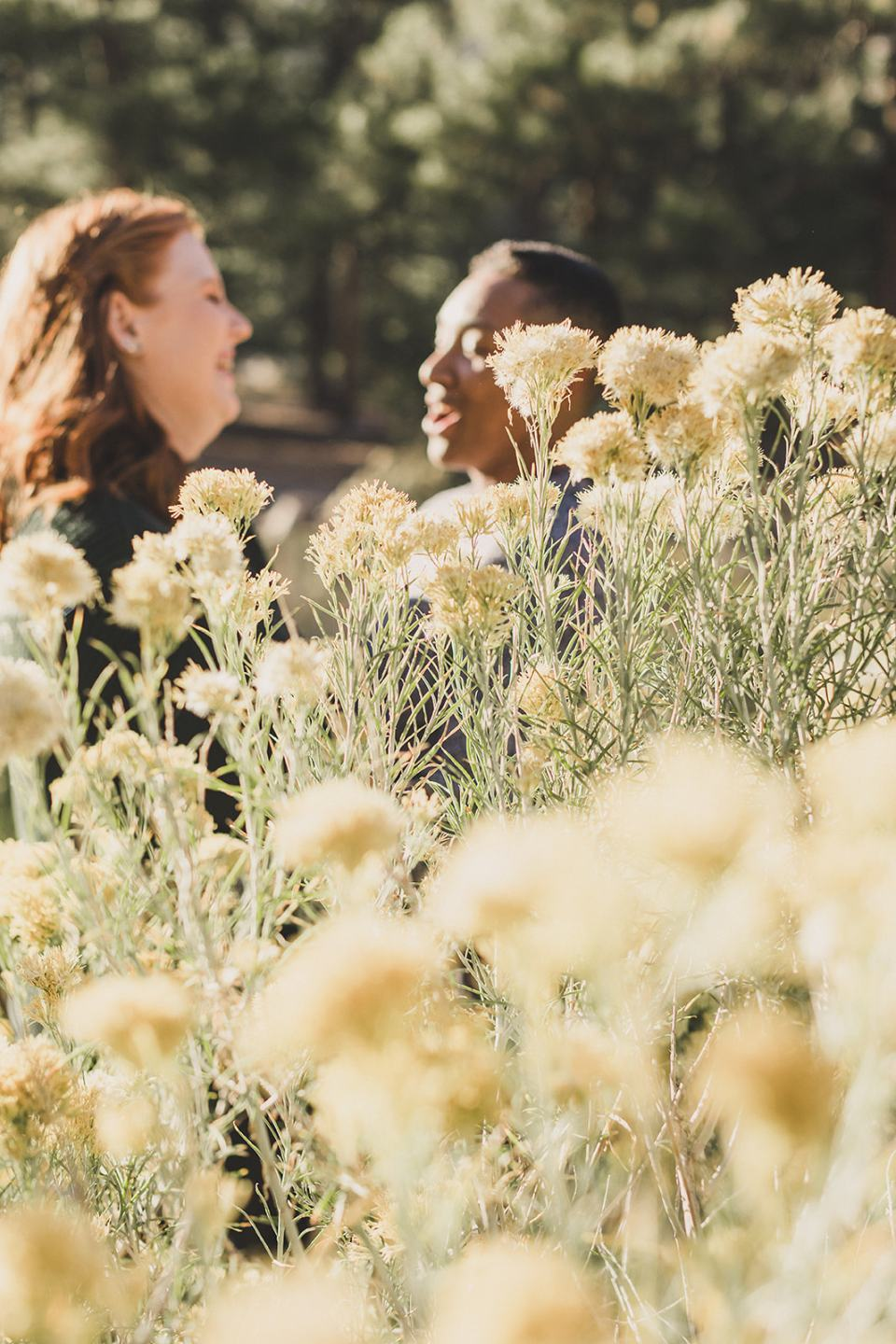 couple poses in flowers along Mt Charleston