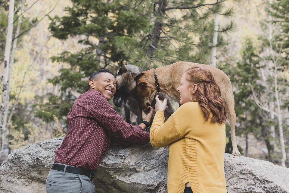 couple plays with dogs during family photos in Mt Charleston