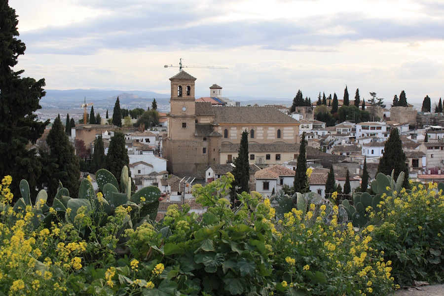 An overview of the city of Granada, Spain with yellow flowers and cacti in the foreground