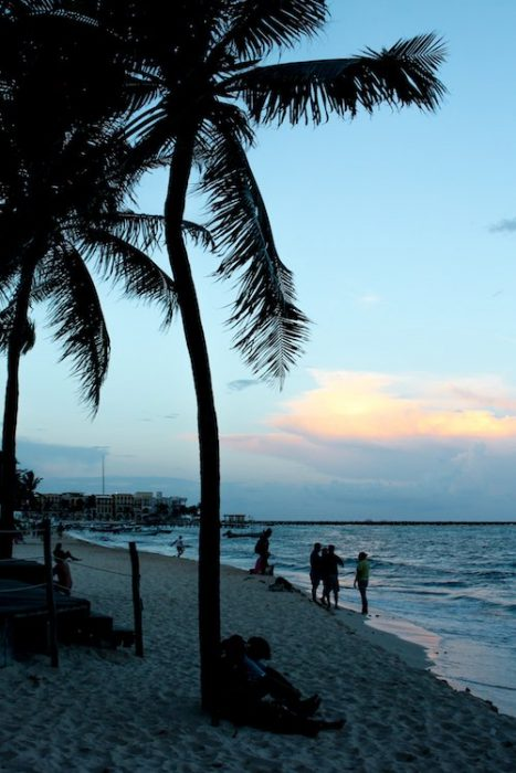 Sunset in playa del carmen with palm trees, the ocean, and people lounging on the beach.