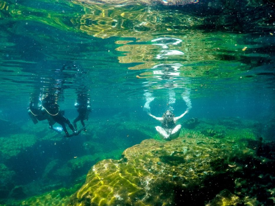 Underwater in a cenote with three scuba divers.
