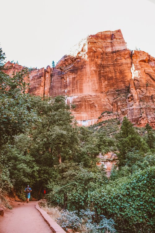 A photo of red rock cliffs in Zion National Park, Utah