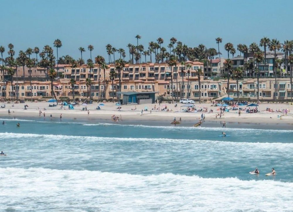 A shot of the beach, surfers, and palm trees in Oceanside, California