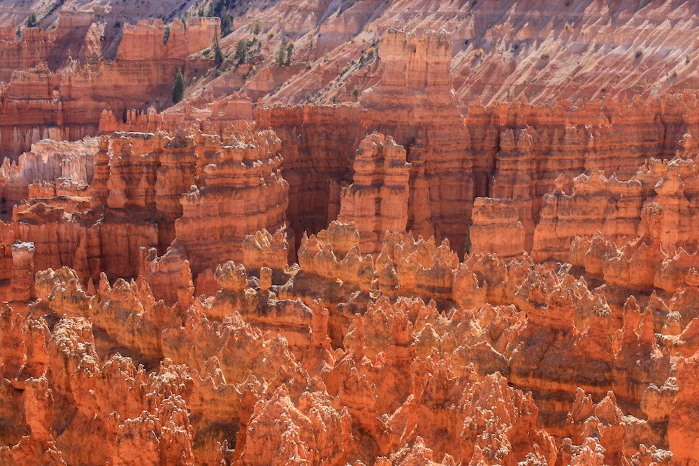 An aerial shot in Bryce Canyon National Park, Utah