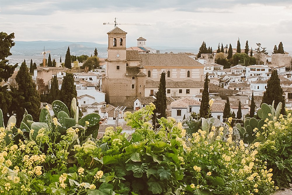 A view of downtown Granada behind yellow and green cacti in Granada Spain