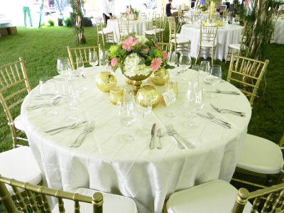 chair linens for rent walmart beach chairs on sale equipment rentals petoskey mi party rental harbor linen in northwestern michigan and the upper peninsula