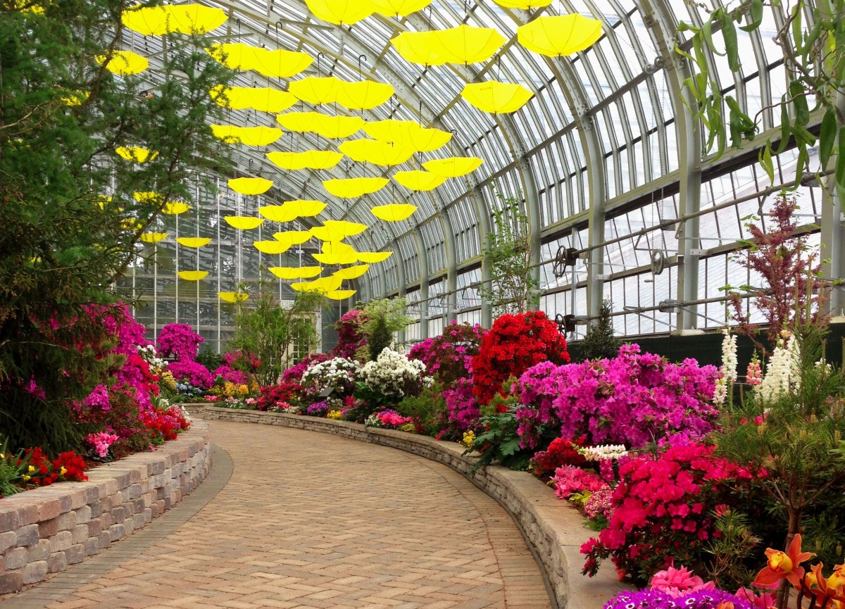Garfield Park Conservatory, Chicago, IL
