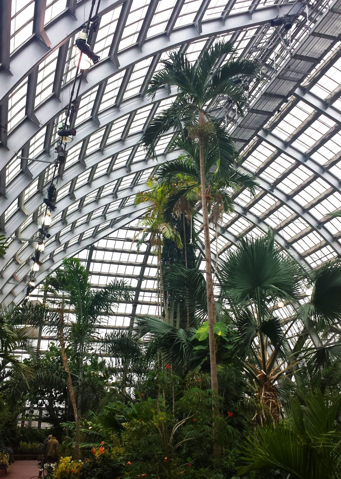 Garfield Park Conservatory Chicago 9