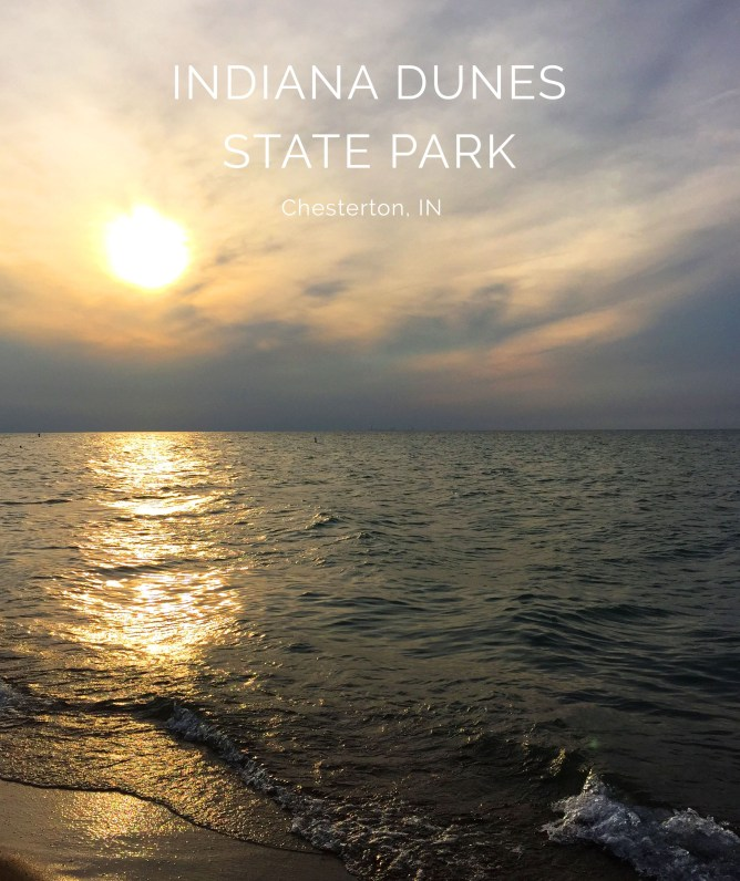 Indiana Dunes State Park 16