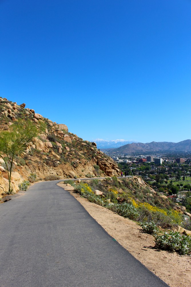 Mt Rubidoux Riverside California 5