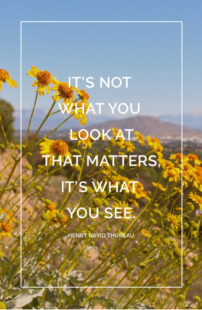 Its not what you look at that matters 1