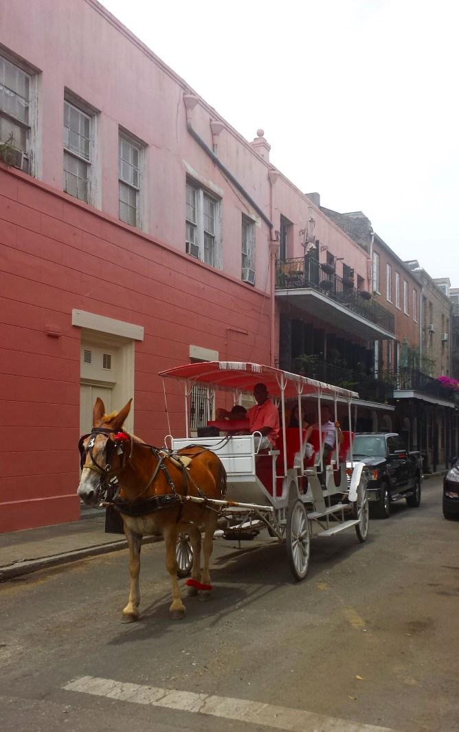 New Orleans French Quarter 7