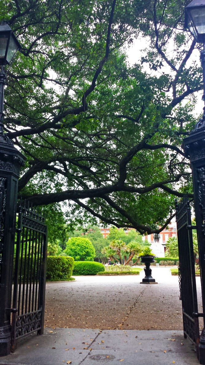 New Orleans Jack Square 4