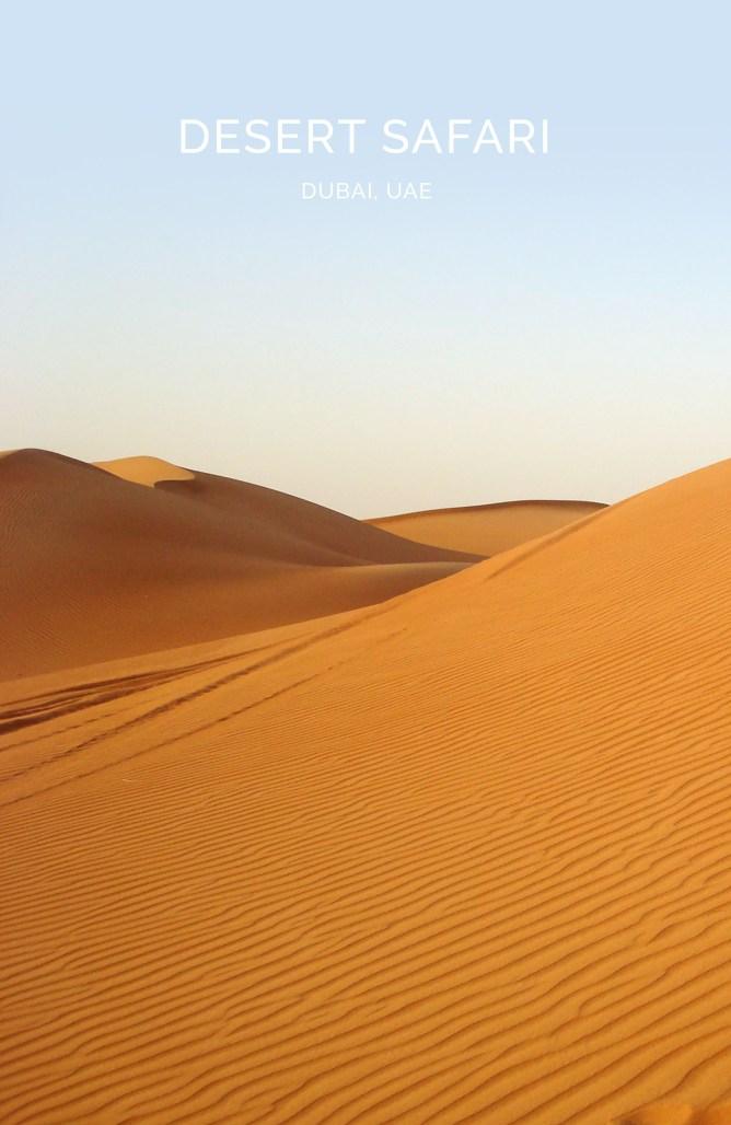Desert Safari Dubai 17